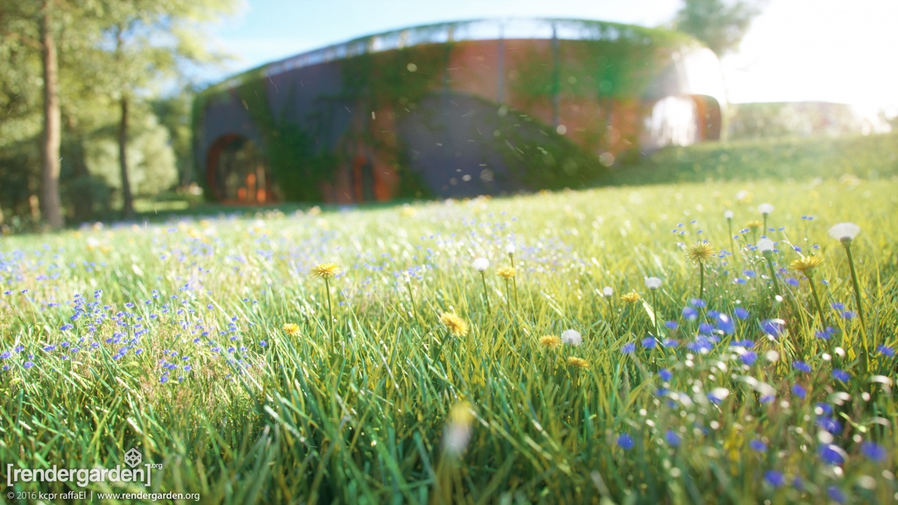 The Beauty of Creation - Expo Building - Macro Shot | Research & Educational Station - Faculty of Biology - University of Warsaw